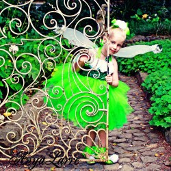Tinkerbell Fairy Gown